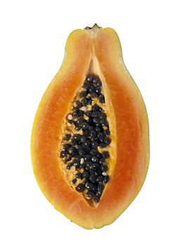 theme-exotic-fruit-3.png