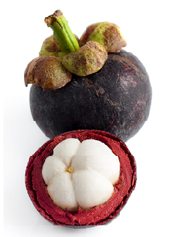 theme-exotic-fruit-6.png