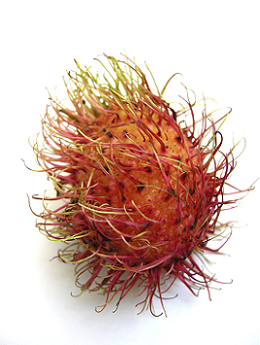 theme-exotic-fruit-7.png