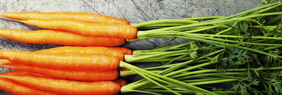 theme-wide-carrots-1.png
