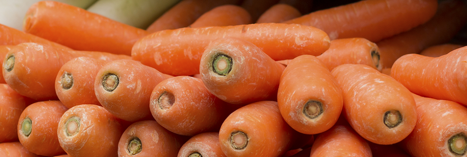 theme-wide-carrots-2.png
