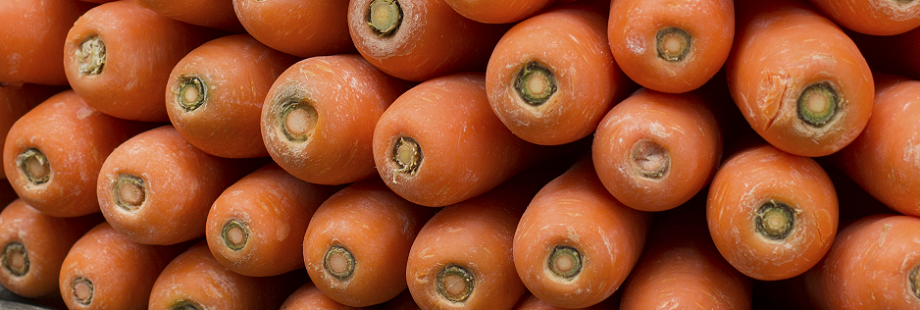 theme-wide-carrots-3.png